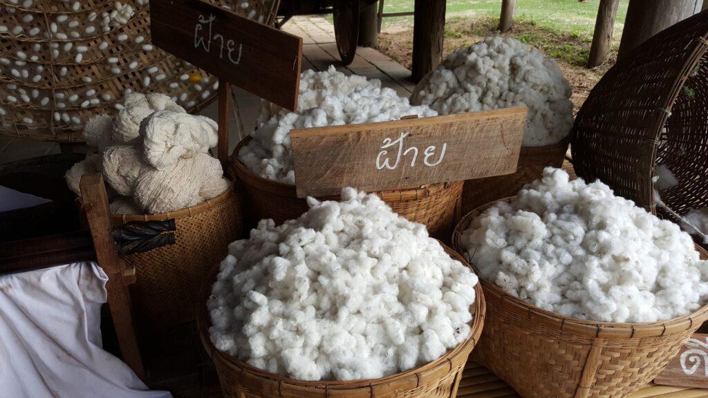 organic cotton in india
